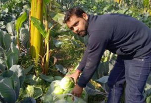 sonipat vegetable growers of the area visited the farmers movement