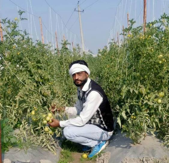 sonipat first lockdown now farmer movement vegetable crop collapsed