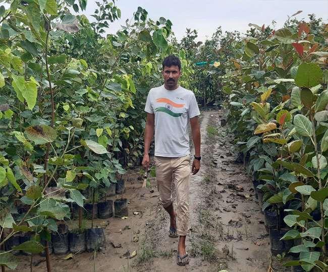 treeman made oxygen garden on the barren land of villages